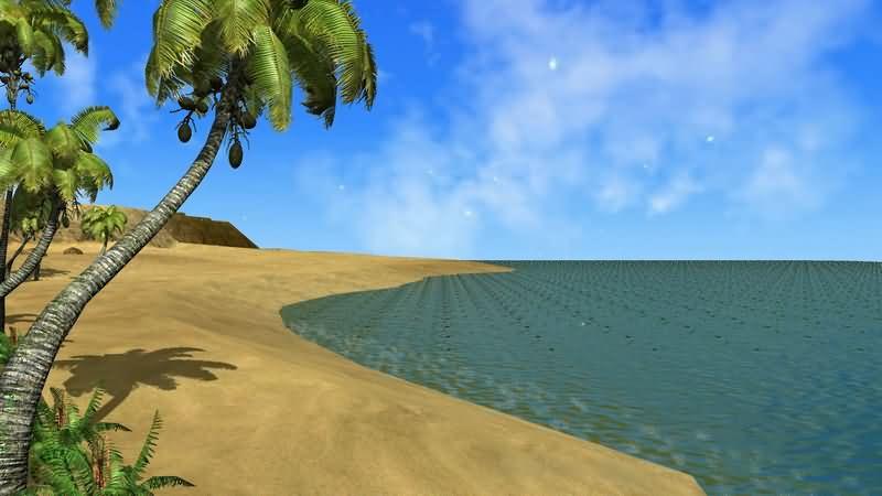 大海沙滩椰子树.jpg