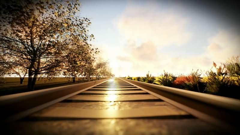 一望无际的铁路轨道与树荫.jpg