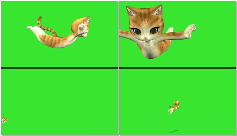 绿屏抠像欢快的卡通小猫.jpg