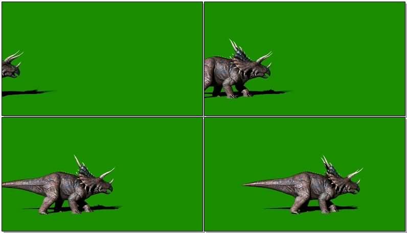 绿屏抠像恐龙三角龙.jpg