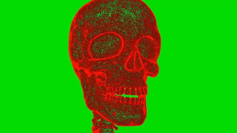 绿屏抠像旋转的红色人体骨骼.jpg