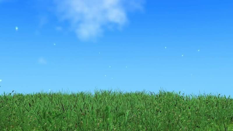 蓝天白云被风吹拂的草地.jpg
