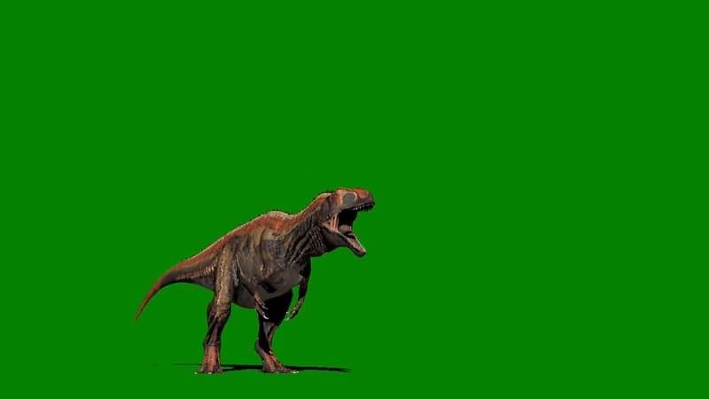 绿屏抠像发怒嚎叫的恐龙.jpg