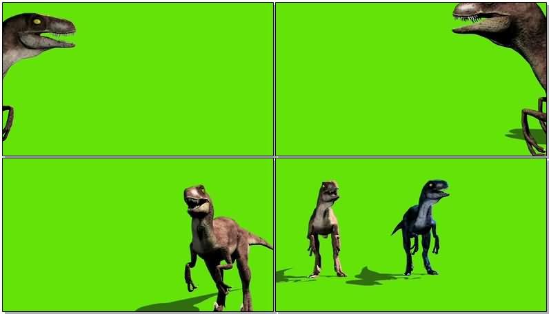 绿屏抠像侏罗纪公园恐龙视频素材