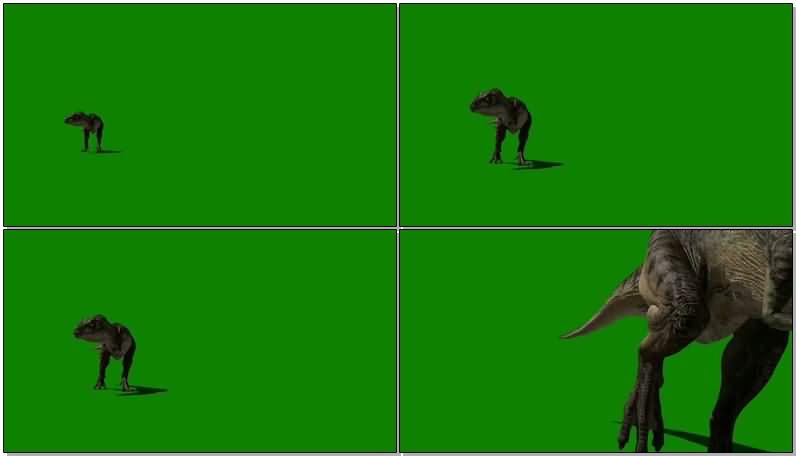 绿屏抠像怒吼的霸王龙.jpg