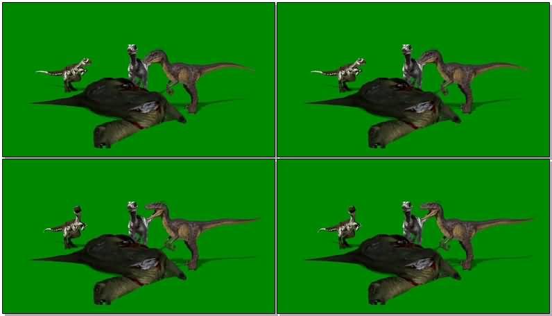 绿屏抠像吃食的恐龙.jpg