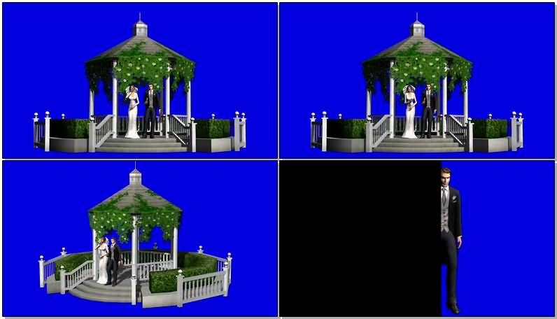 蓝屏抠像在殿堂里结婚的新人.jpg