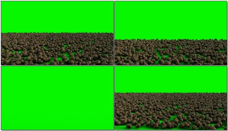 绿屏抠像一地的骷髅头.jpg