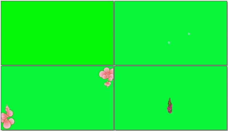 绿屏抠像鲜花组成的字母图案.jpg
