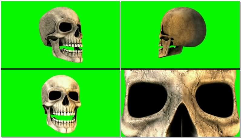 绿屏抠像说话的骷髅人骨.jpg