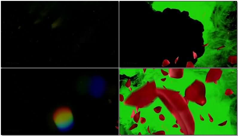 绿屏抠像水墨烟雾玫瑰花瓣.jpg