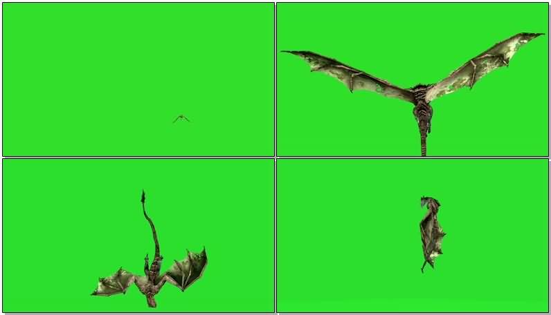 绿屏抠像飞龙怪兽.jpg