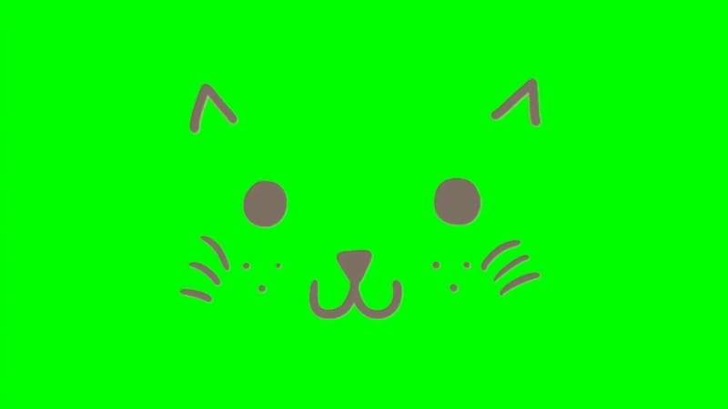 绿屏抠像可爱猫咪表情.jpg