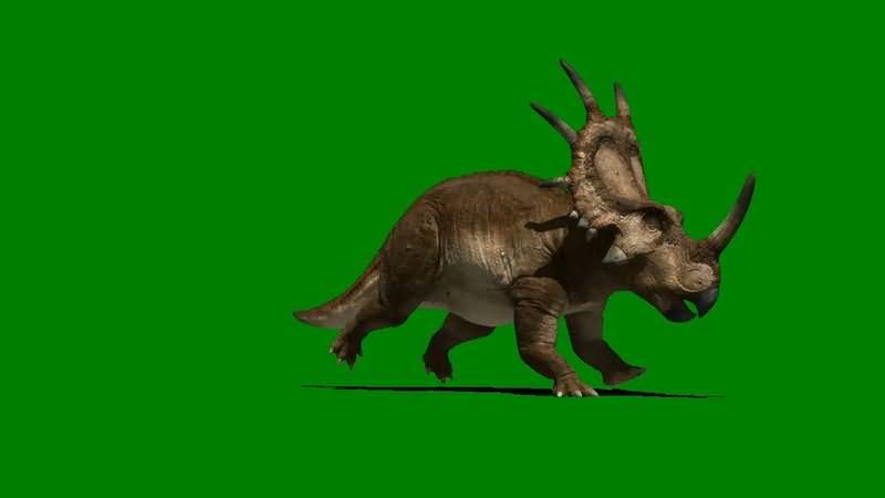 绿屏抠像奔跑的野牛龙恐龙.jpg