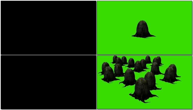 绿屏抠像异形蛋卵.jpg