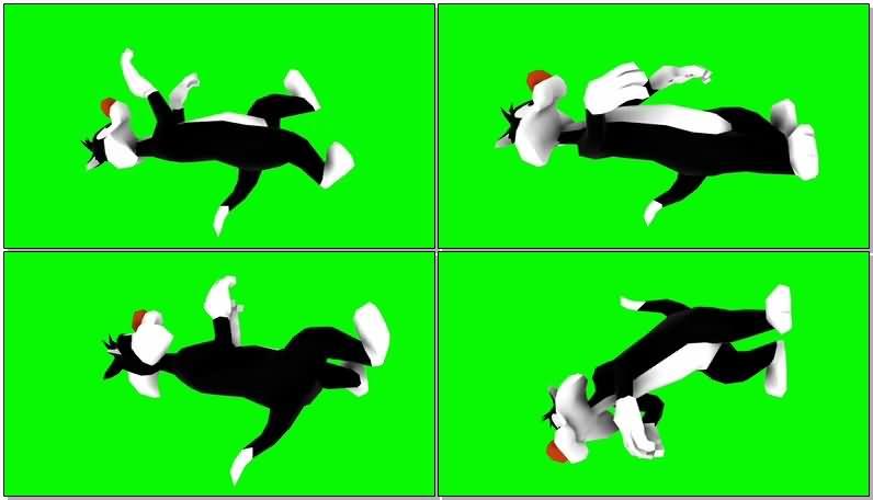 绿屏抠像卡通兔子罗杰.jpg
