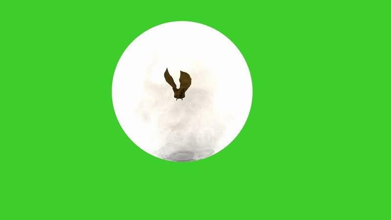 绿屏抠像蝙蝠.jpg