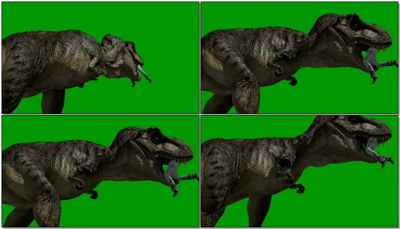 绿屏抠像恐龙吃人.jpg