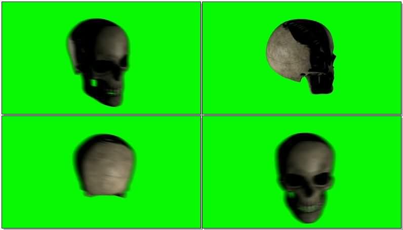 绿屏抠像骷髅头骨.jpg