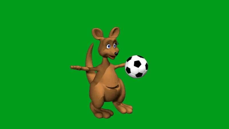 绿屏抠像踢足球的袋鼠.jpg