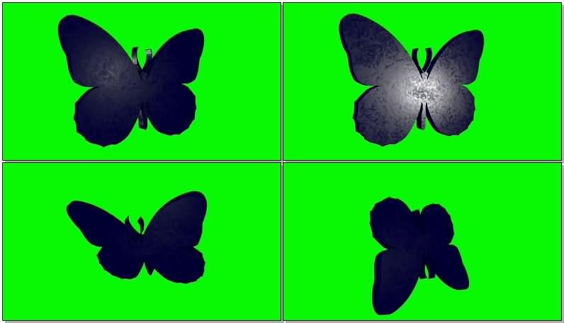 绿屏抠像3D蝴蝶模型.jpg