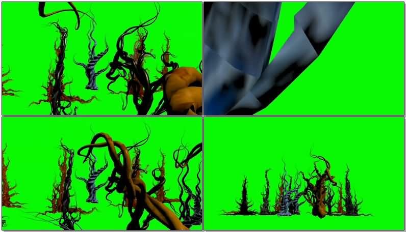 绿屏抠像奇异古怪的树藤.jpg