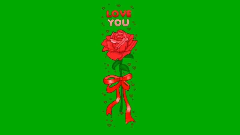 绿屏抠像卡通玫瑰花.jpg
