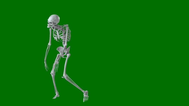 绿屏抠像行走的骷髅骨架.jpg