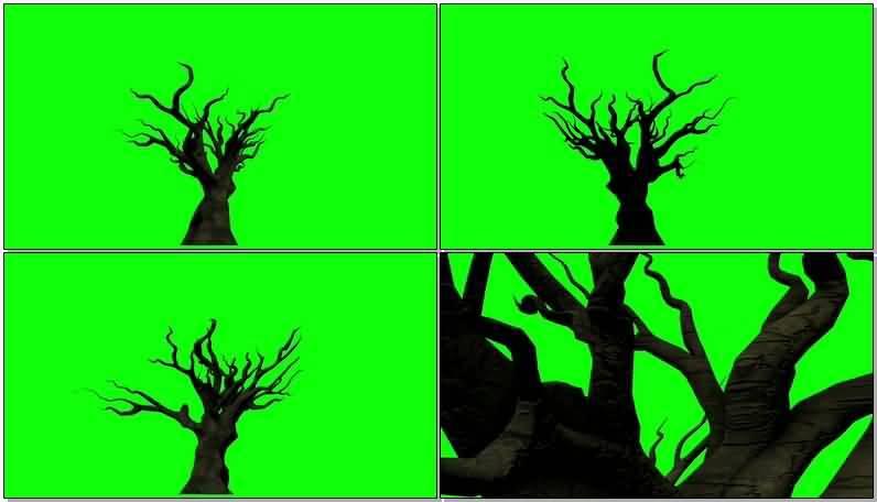 绿屏抠像怪异的枯树.jpg