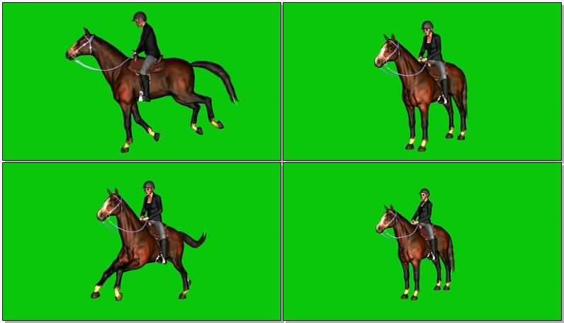 绿屏抠像骑马的女骑手.jpg