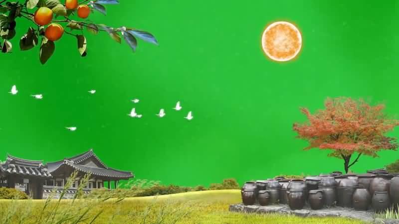 绿屏抠像住宅建筑自然风景.jpg