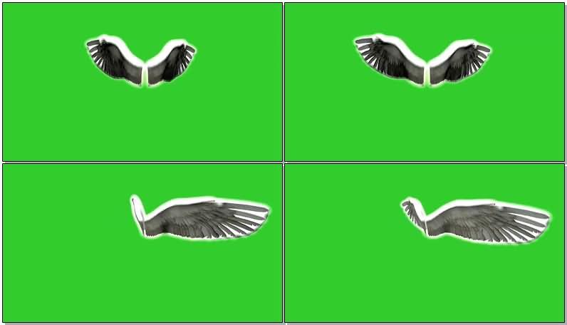 绿屏抠像扇动的闪光天使翅膀.jpg