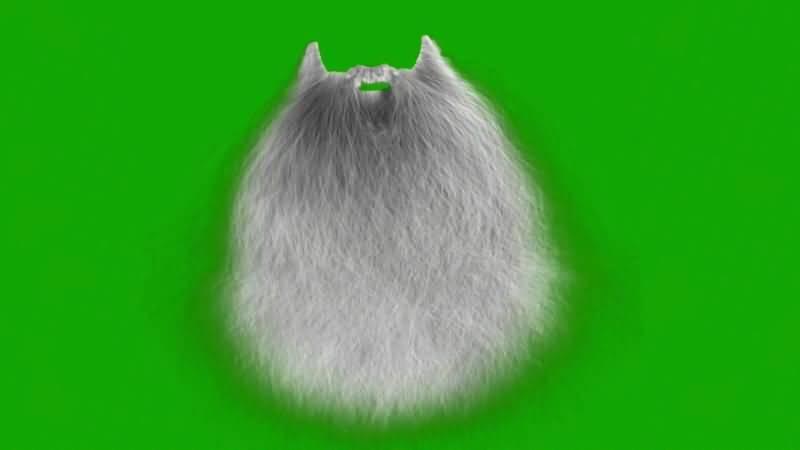 绿屏抠像圣诞老人白色胡须.jpg