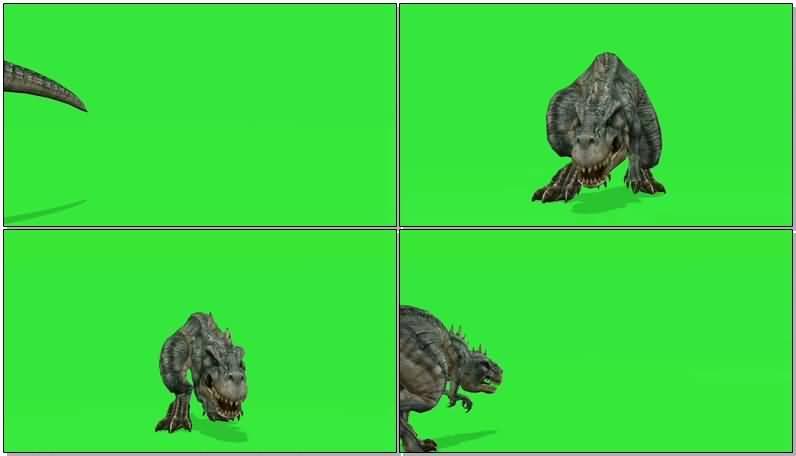 绿屏抠像凶猛的霸王龙.jpg