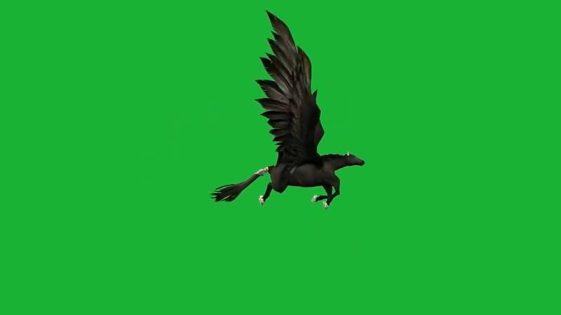 绿屏抠像飞行的黑马.jpg