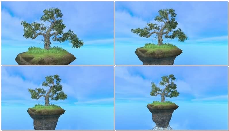 绿色大树盆栽.jpg