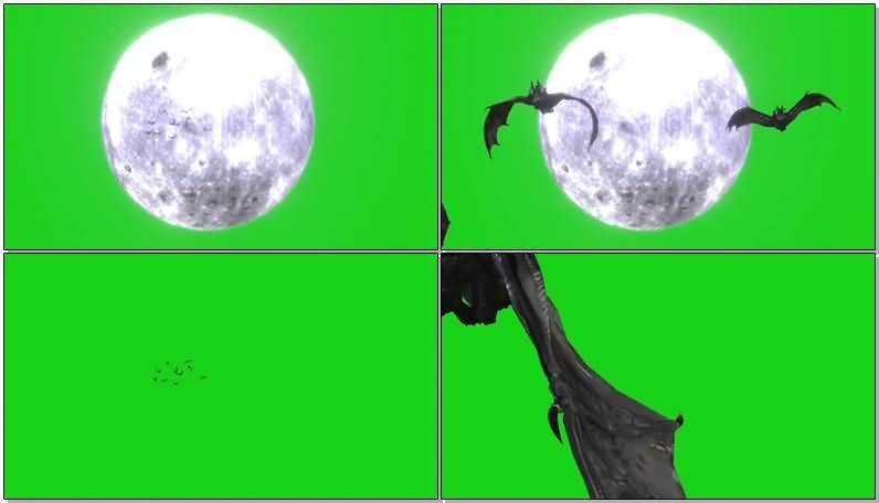 绿屏抠像满月阴森蝙蝠.jpg