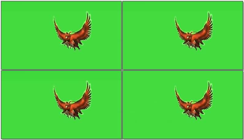 绿屏抠像飞行的火鸟.jpg