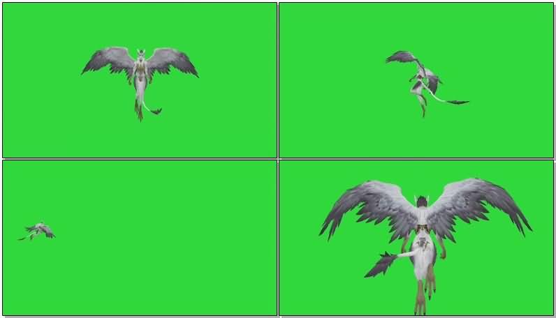 绿屏抠像飞行的翼人.jpg