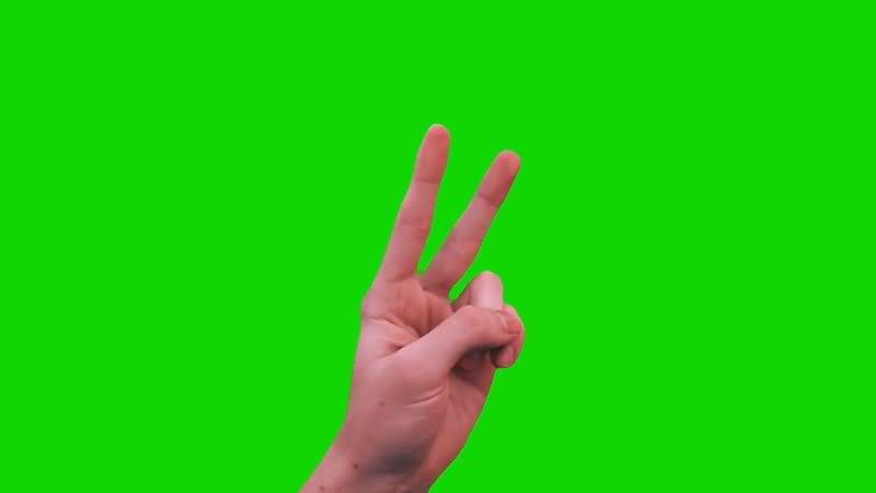 绿屏抠像胜利手势.jpg