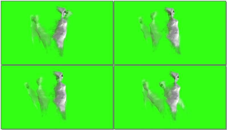 绿屏抠像白色幽灵.jpg