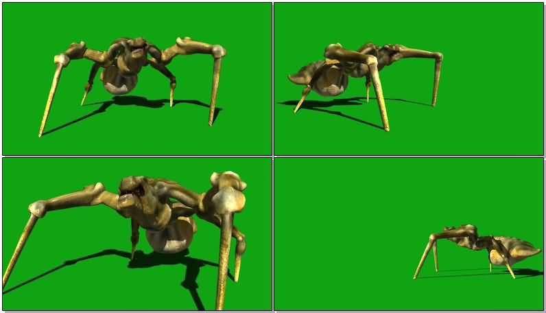 绿屏抠像多脚怪物.jpg