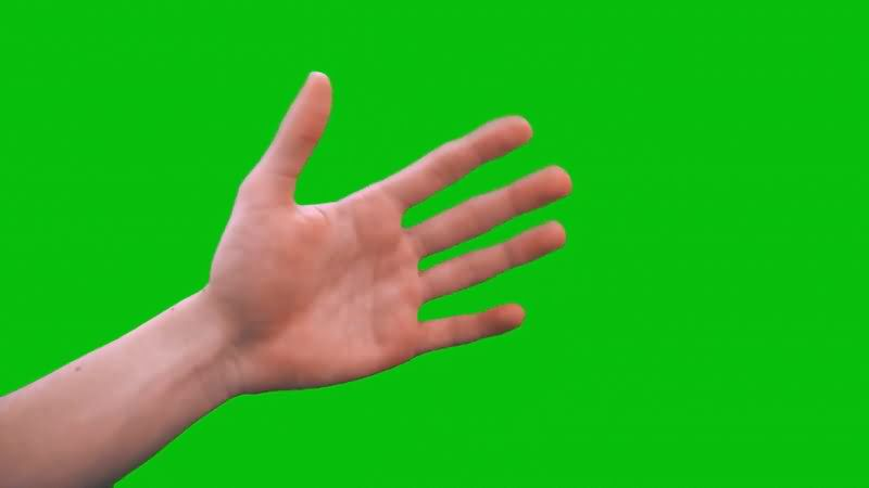 绿屏抠像真人手掌.jpg