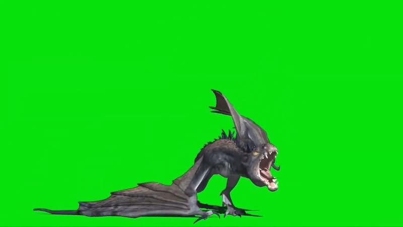 绿屏抠像飞翔的恶龙.jpg
