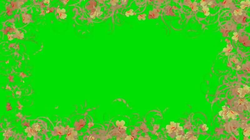绿屏抠像花朵边框.jpg