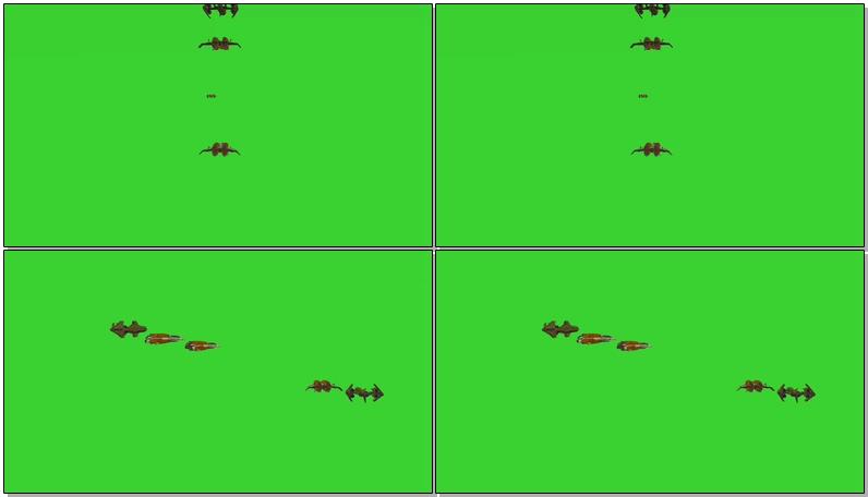 绿屏抠像编队飞行的飞机.jpg