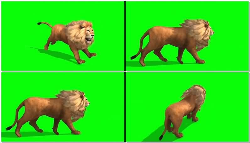 绿屏抠像雄狮.jpg