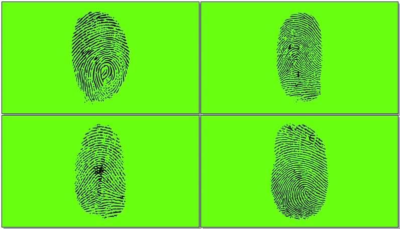 [4K]绿屏抠像指纹.jpg