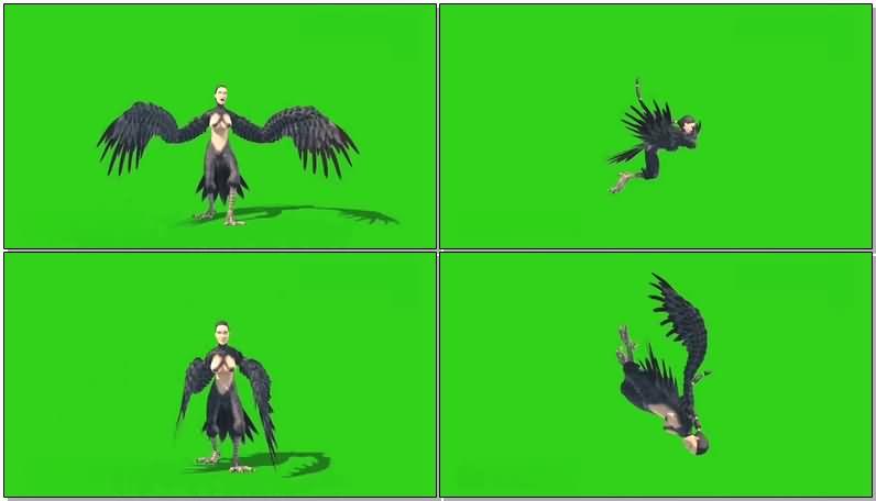 绿屏抠像鸟人.jpg