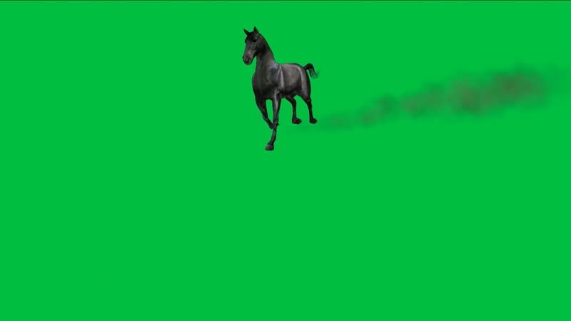 绿屏抠像奔跑的黑马.jpg